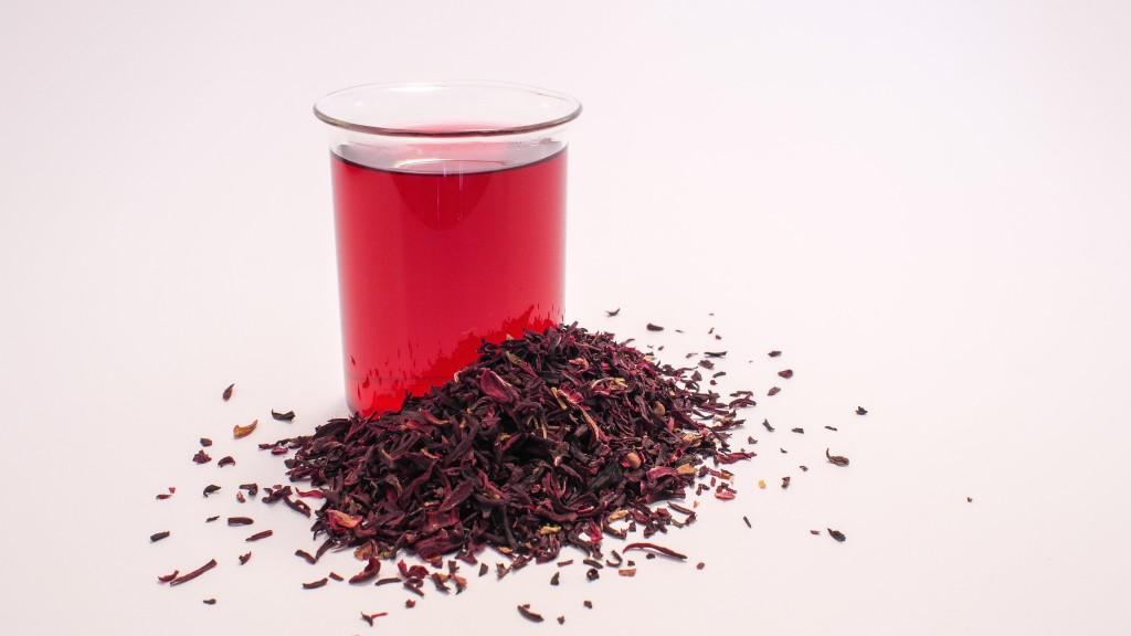Chá de hibisco emagrece chris castro 4