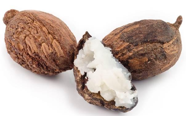 benefícios da manteiga de karité beleza pele chris castro 4