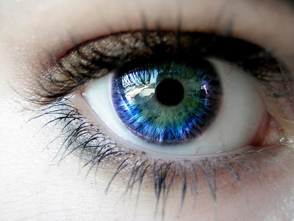 o que comer para a saúde dos olhos luteína chris castro 3