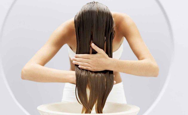 óleo de coco para os cabelos chris castro produtos 5