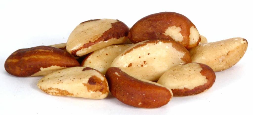 Benefícios da castanha do pará brasil chris castro 1