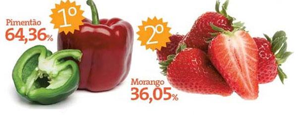 morangos-e-agrotoxicos-chris-castro-1