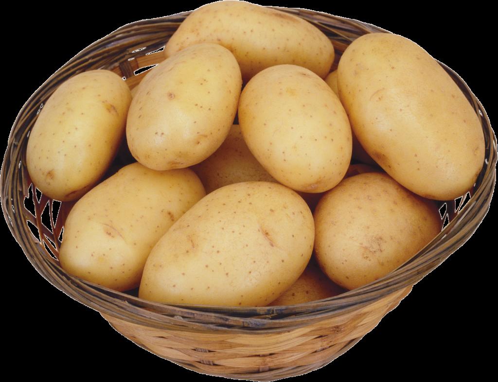 alimentos-fonte-de-acido-hialuronico-chris-castro-5